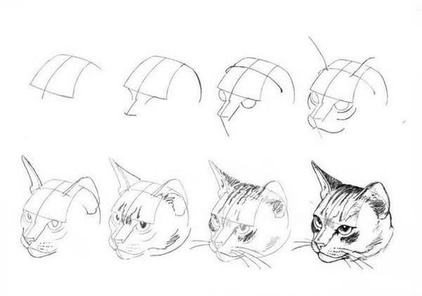 Сложные картинки для срисовки
