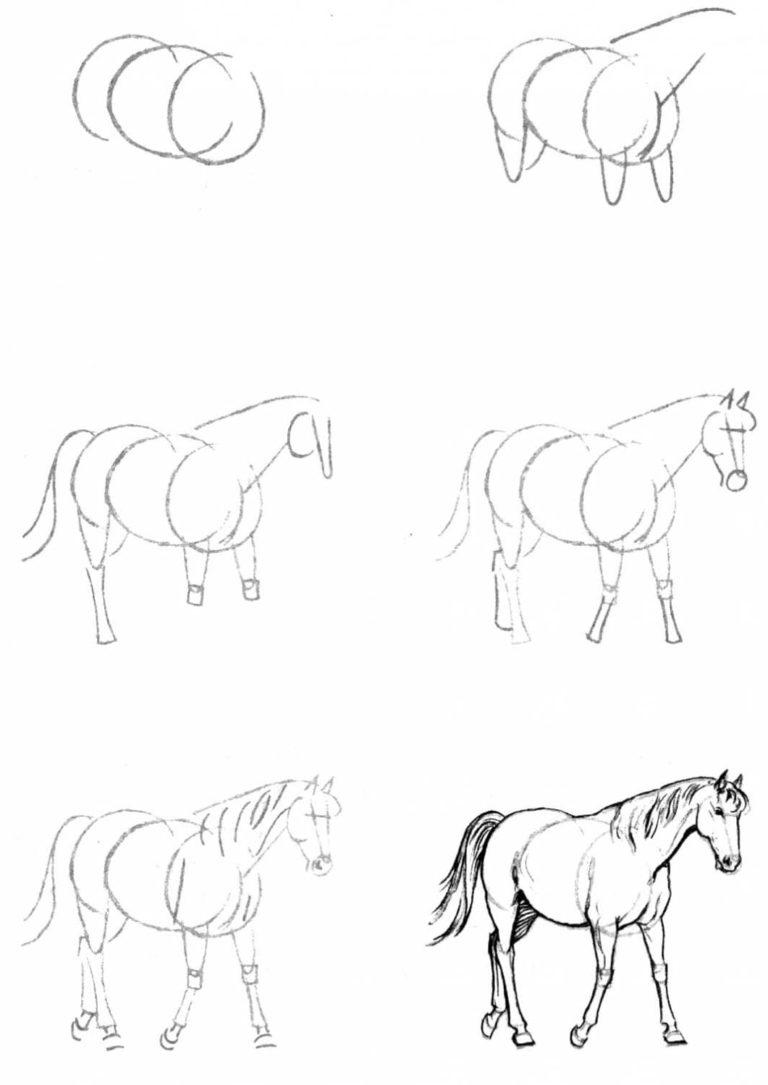 Смешной, рисунки для срисовки легкие и красивые картинки для начинающих поэтапно
