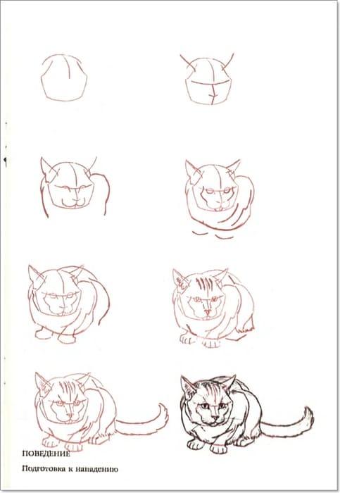 Рисунки карандашом для срисовки поэтапно