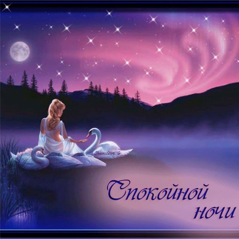 Доброй ночи картинки красивые с надписями мужчине