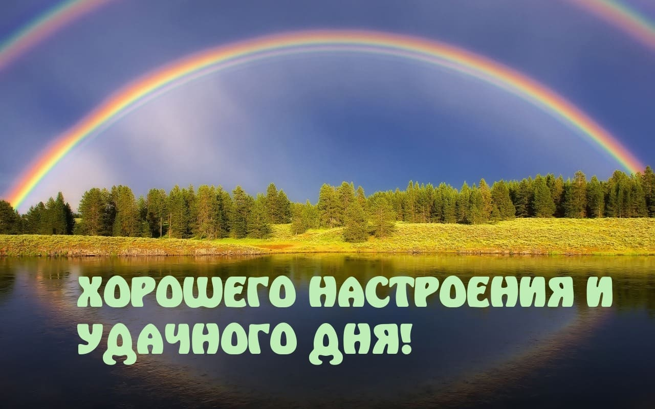 Удачного дня хорошего настроения картинки, сердечко открытка прикольная