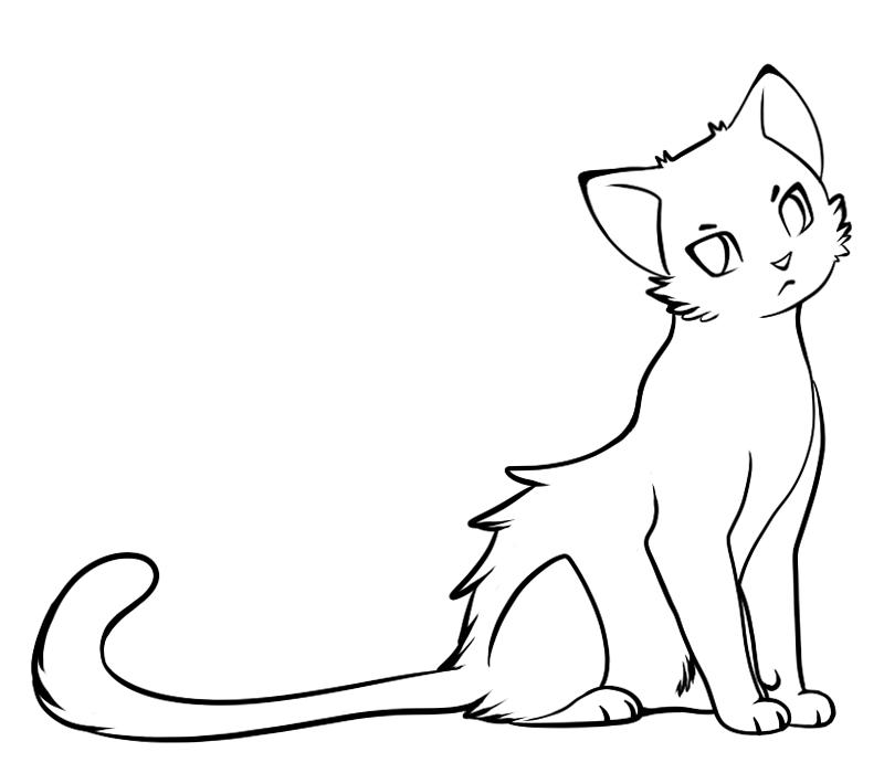 Картинки котов для срисовки красивые