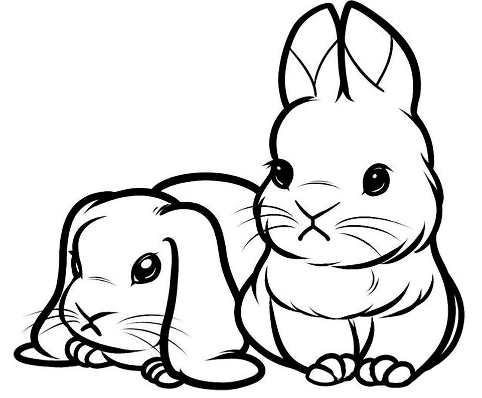 Картинки животные для рисования