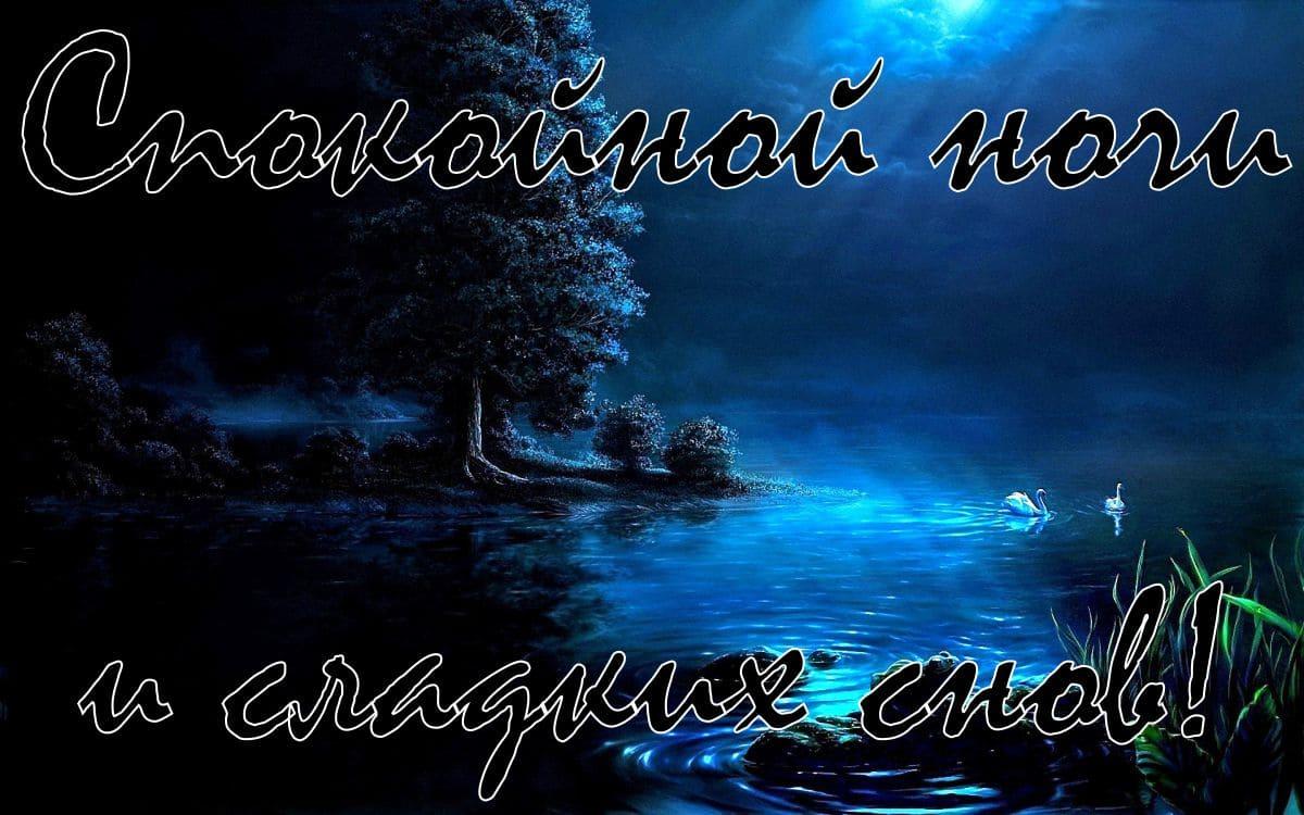 Картинки спокойной ночи сережа прикольные, поздравление