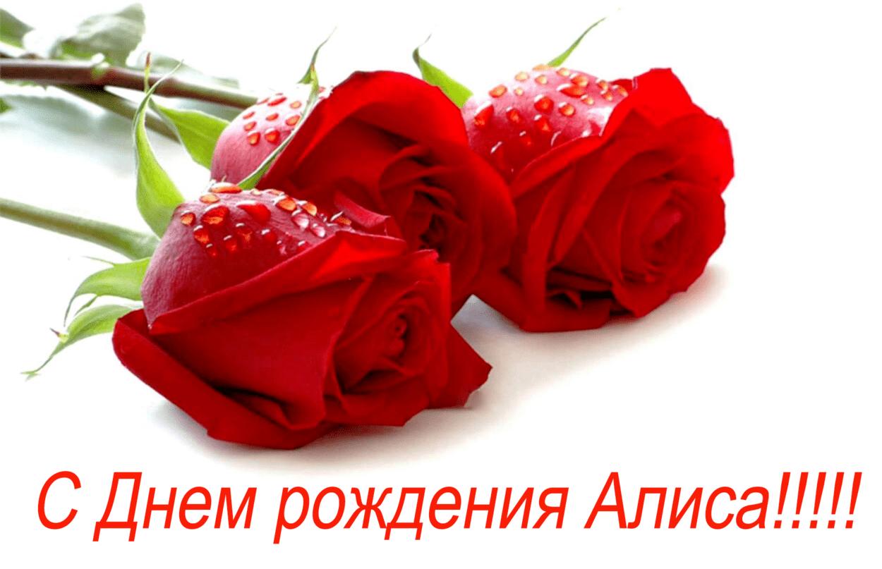 Поздравления с днем рождения анну картинка