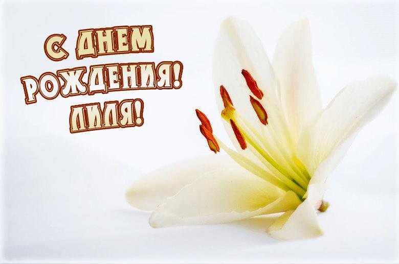 Для, открытки на день рождения лилия