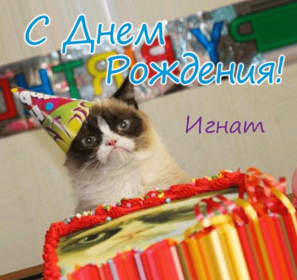 Картинки с днем рождения Игната