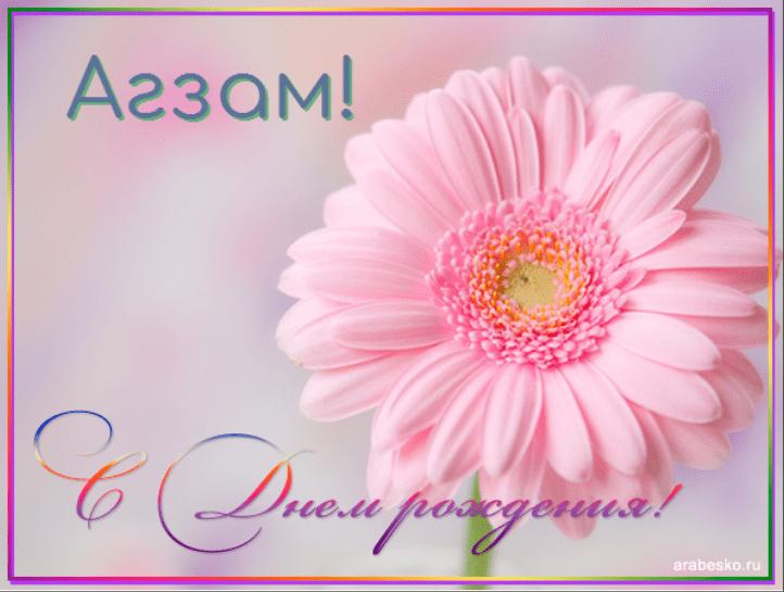 Днем, картинки с днем рождения женщине цветы герберы