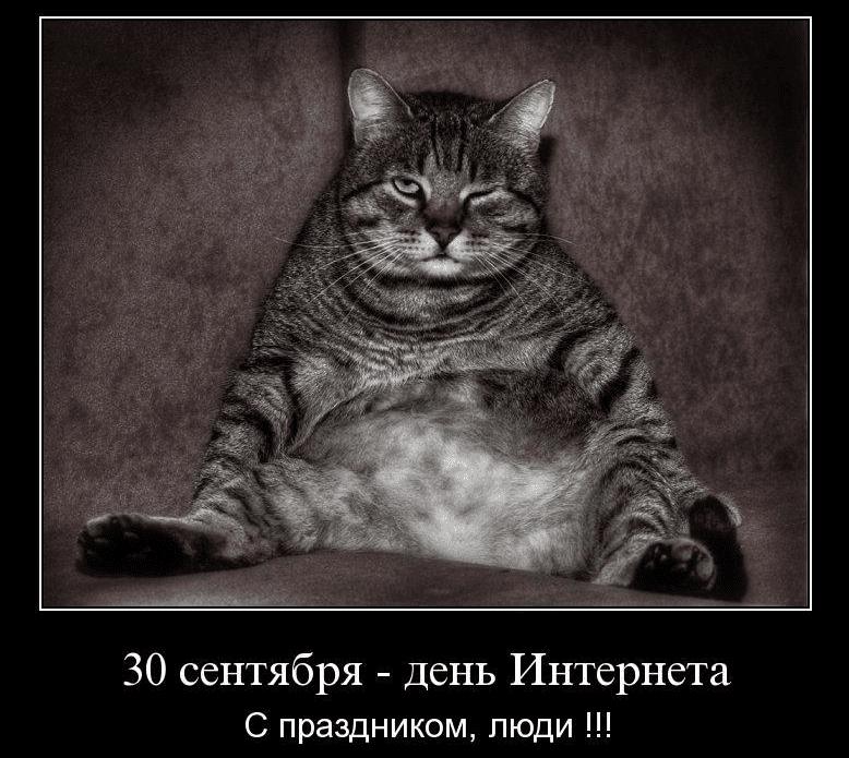 Поздравления с Днём интернета в картинках